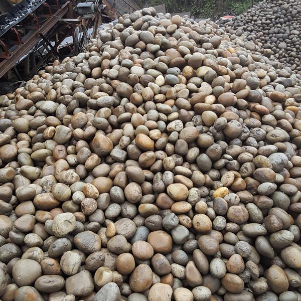 贵州哪里有鹅卵石_鹅卵石贵州厂家_销售批发。832374352