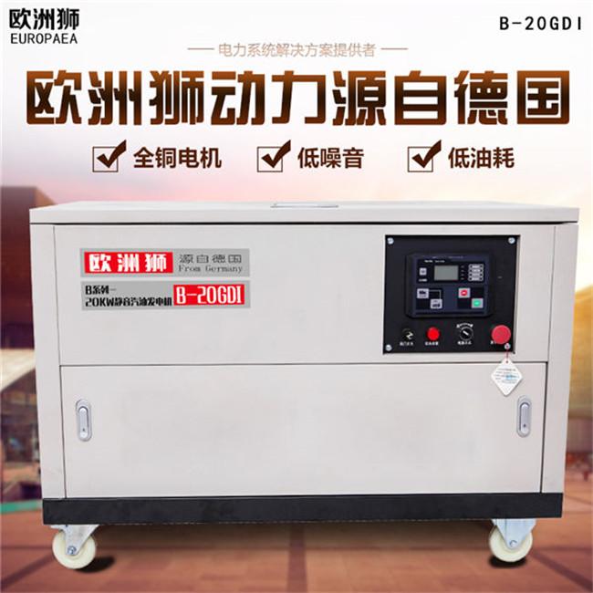 20kw汽油发电机 (4).jpg