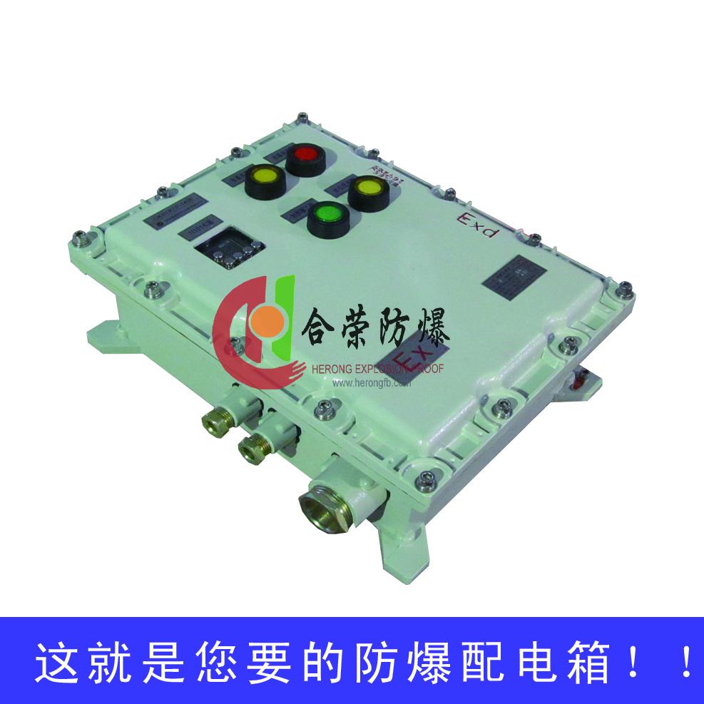 户外专用带防雨罩防爆配电控制箱97146672