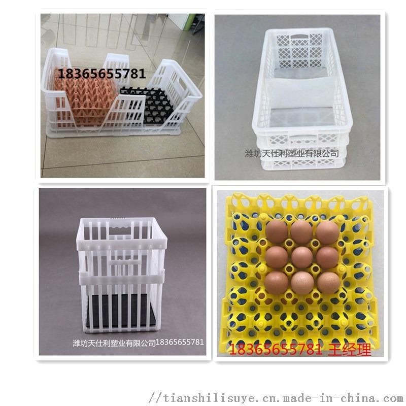 **塑料种蛋筐 塑料种蛋筐报价 配蛋托用种蛋筐115707282