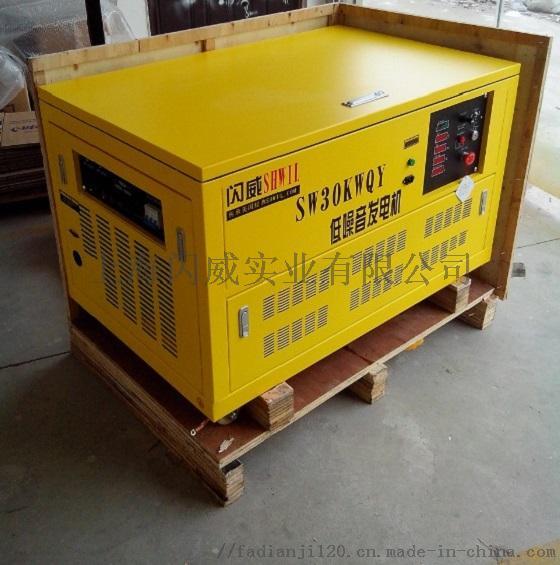 30KW汽油发电机1.jpg