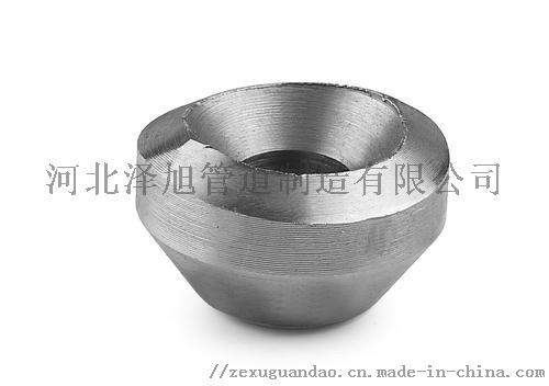 不锈钢S31703三通、317L锻制对焊三通144762325