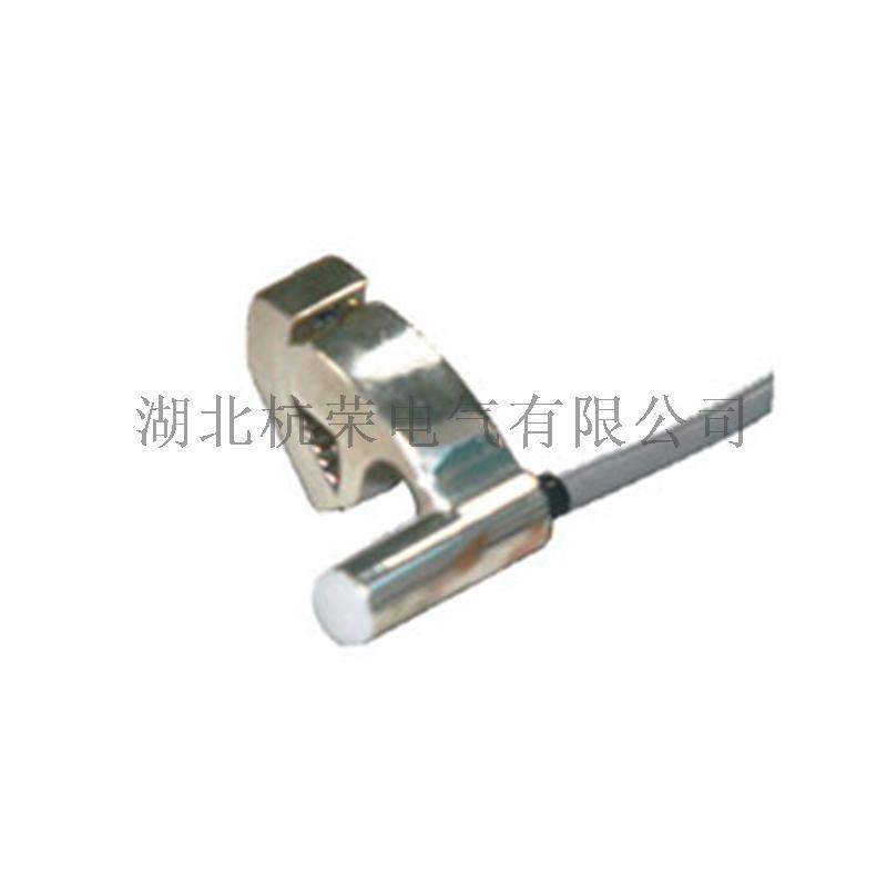 CS1-A氣缸磁性開關_副本.jpg