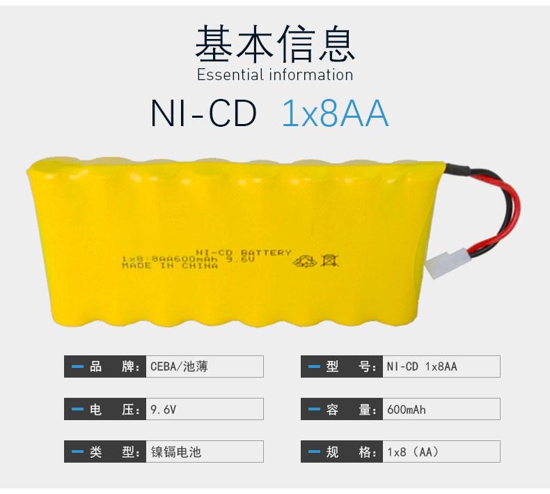 NICD1x8AA_03.jpg