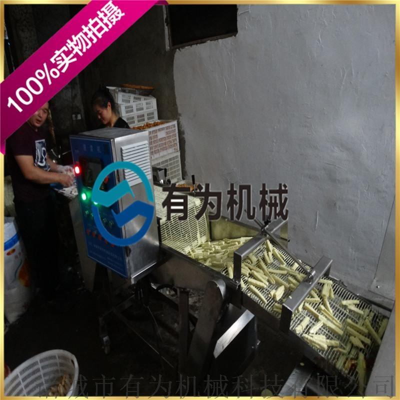 全自动炸茄盒生产设备,茄盒油炸机裹浆机58663162