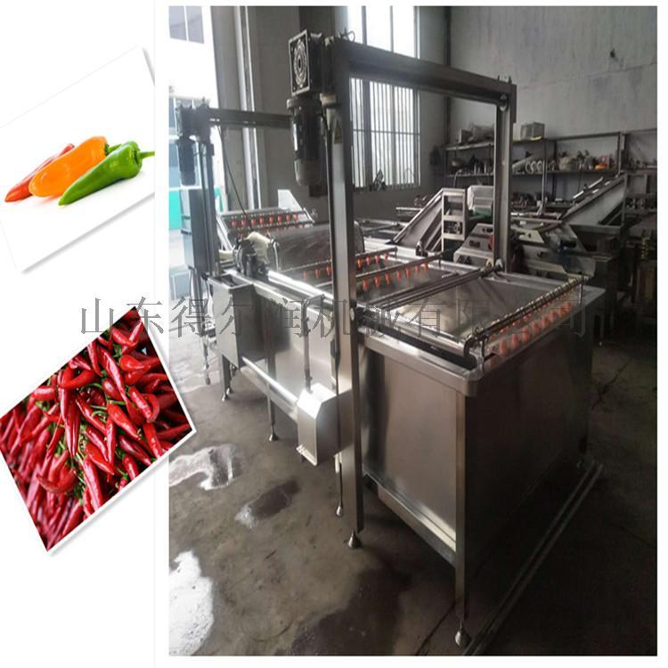 全自动蔬菜清洗机 气泡清洗机 洗蔬菜的机器804965842