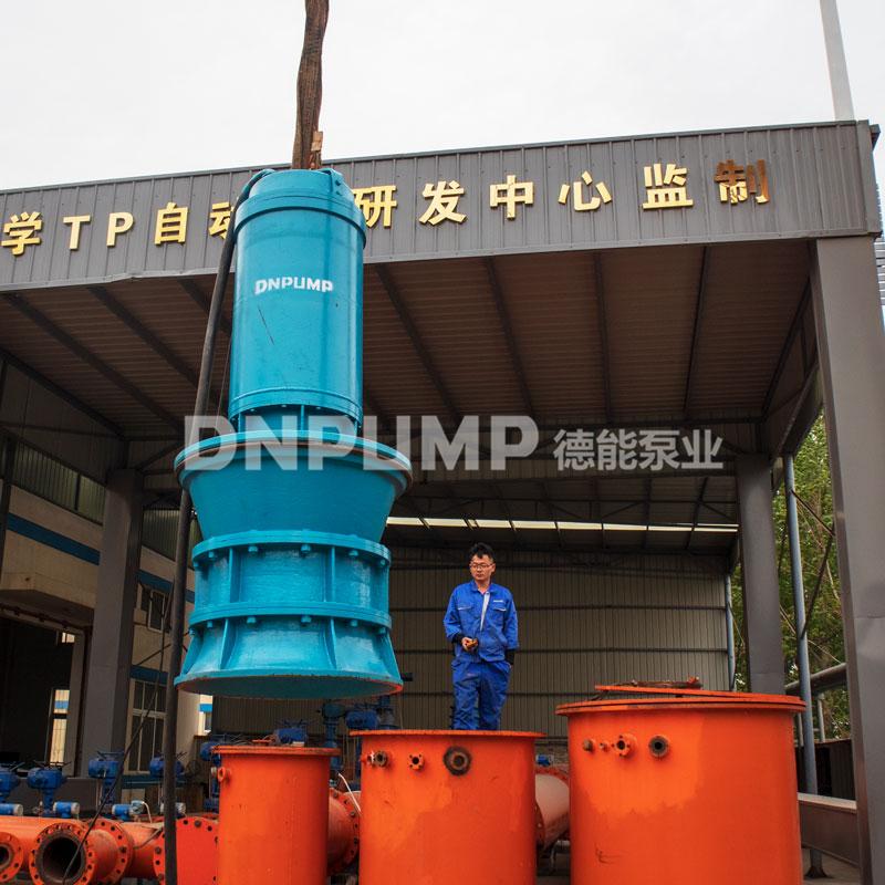 轴流泵厂家泵站整套设备定制化提供822408612
