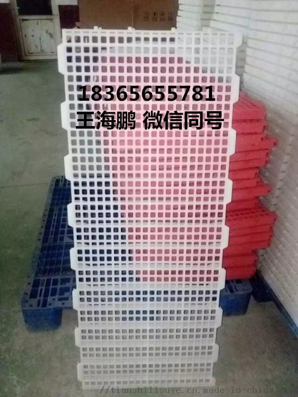 鸡用漏粪板供应厂家 鸡用塑料漏粪板报价837320332