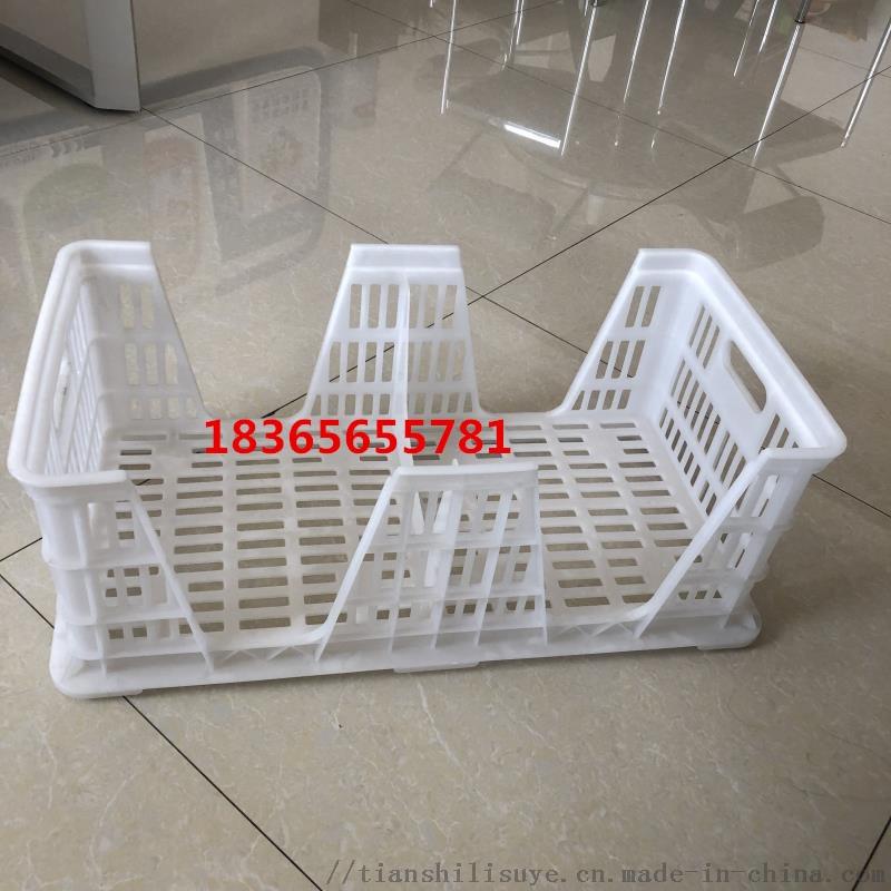 新式种蛋筐 塑料种蛋筐 可配蛋托用蛋筐841086162