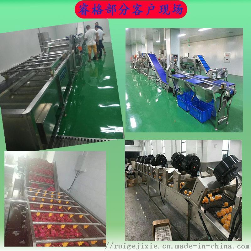 不锈钢全自动蔬菜清洗机58155302