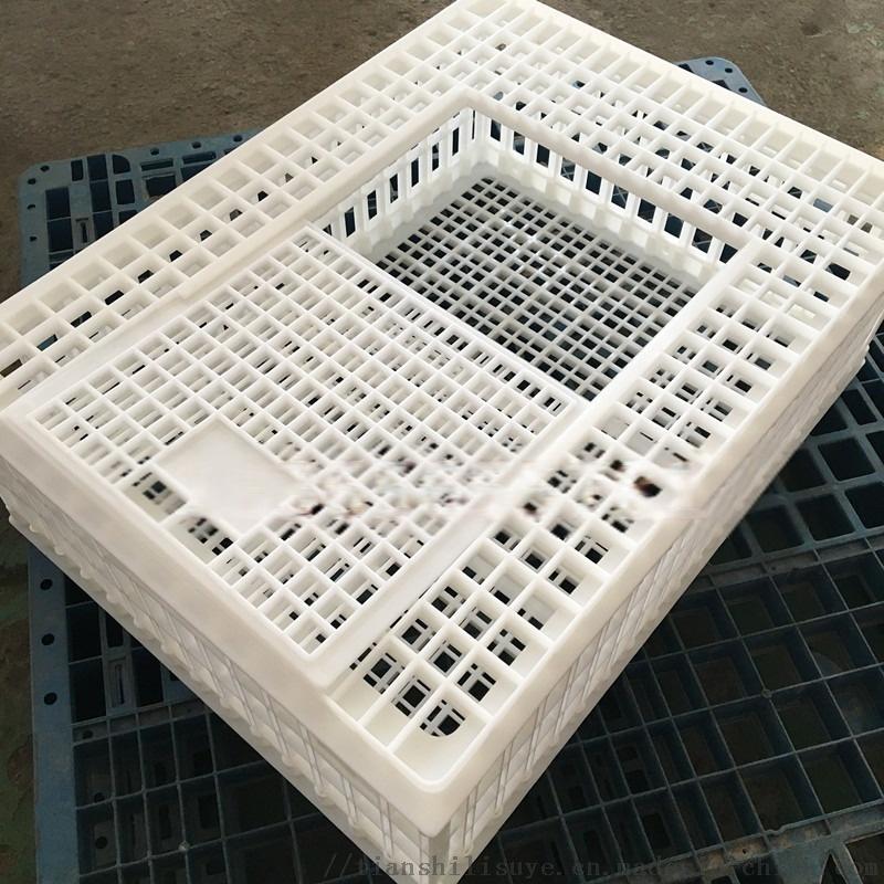 装鸡用塑料鸡笼子 装鸡鸭塑料笼子 装鹅用塑料笼子113059452