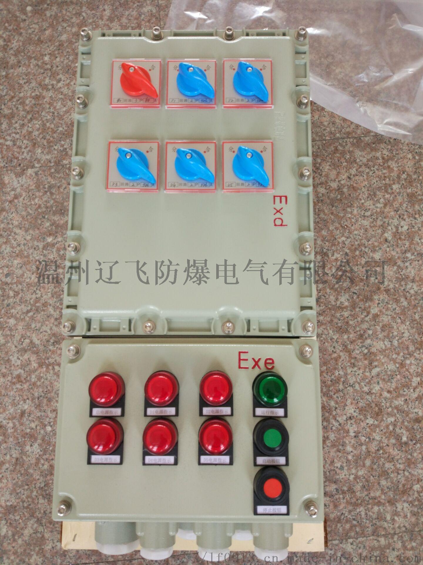 BDX52-6K IIC防爆配电箱60306112