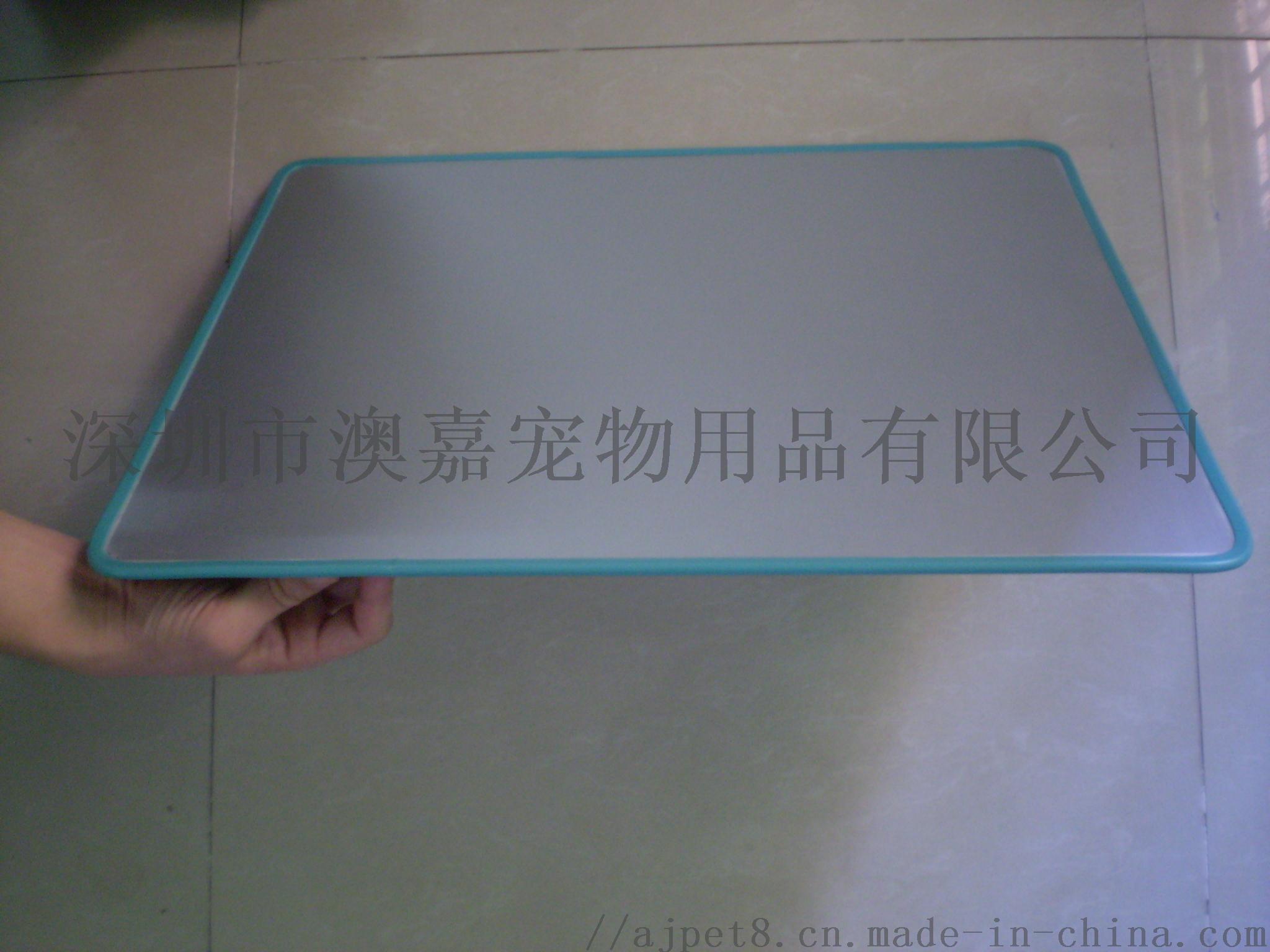P8030015.JPG