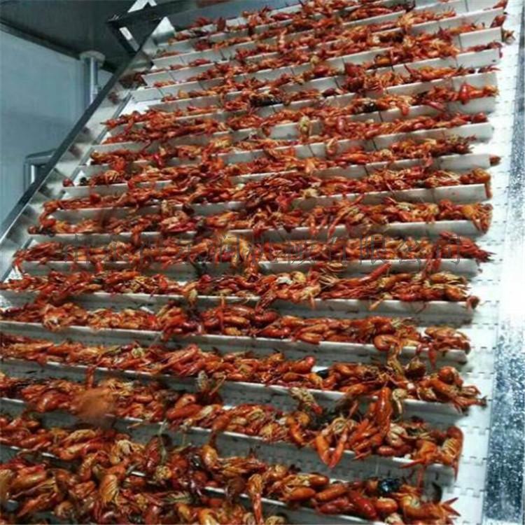 小龙虾清洗机 专业龙虾清洗设备 自动龙虾加工生产线772470482