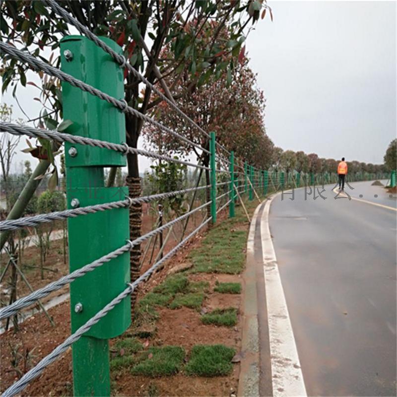 缆索护栏厂家-公路缆索护栏厂家-缆索防护栏796287632