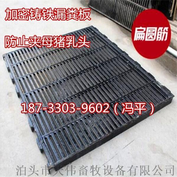 养殖必备漏粪板 育肥漏粪板 塑料育肥漏粪板765006205
