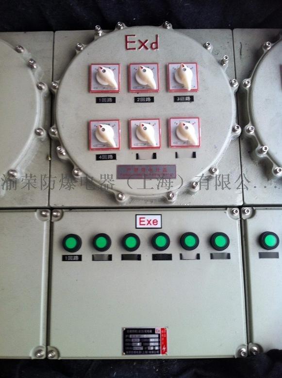 防爆动力配电箱IIC级01.jpg