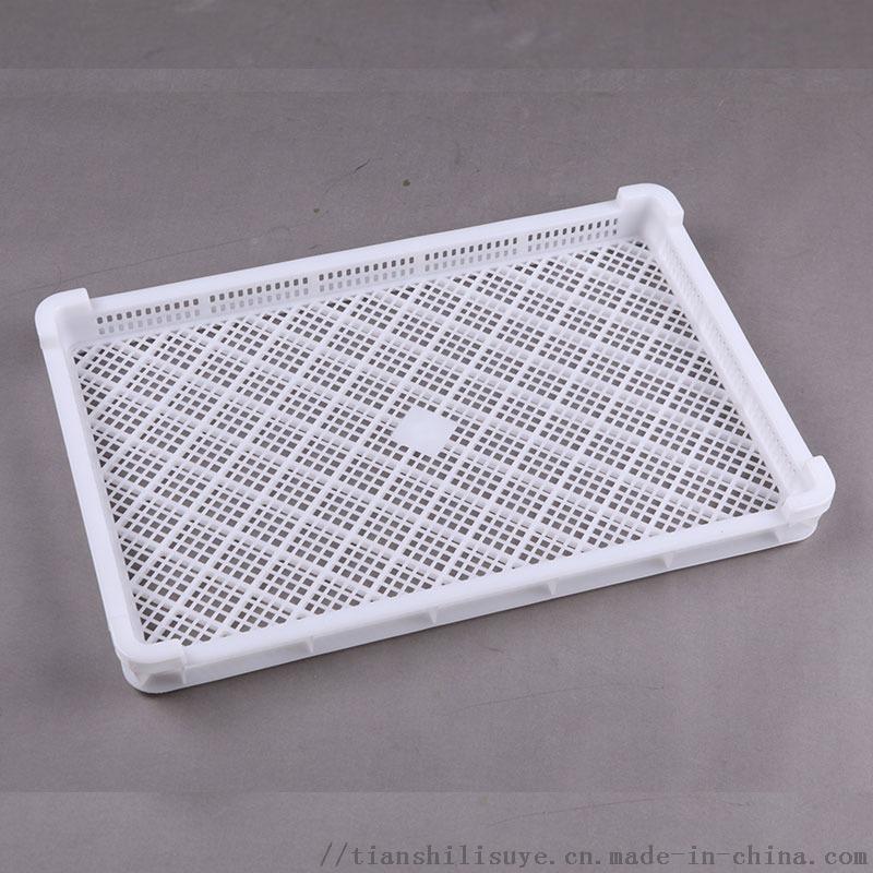 食品厂用塑料单冻盘 冷库用单冻盘 肉制品塑料单冻盘850553352