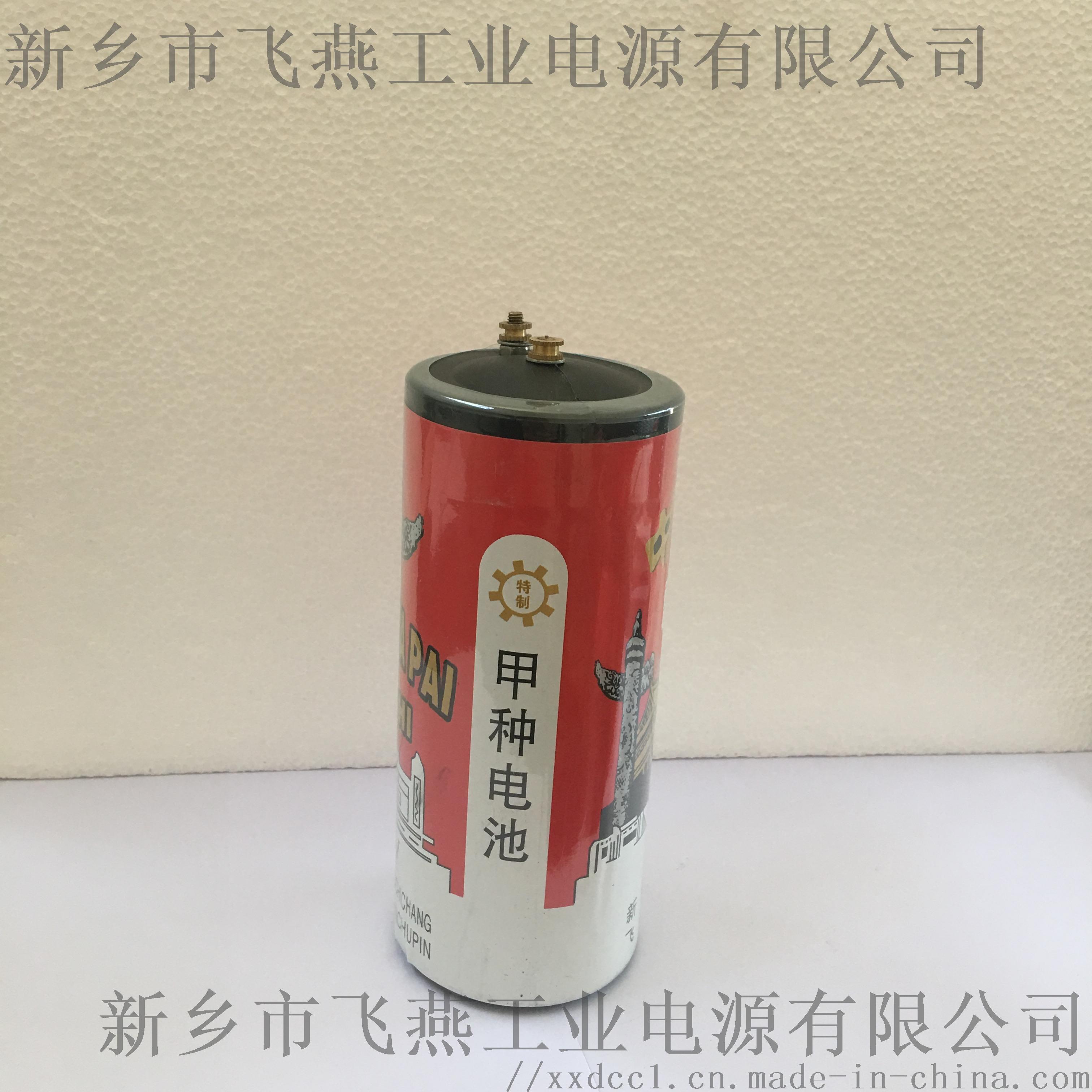 甲电池1.JPG