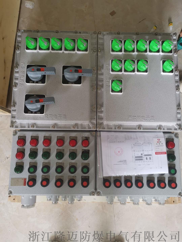 防爆动力配电箱ExdⅡCT4-铝合金(带防雨罩)154110755