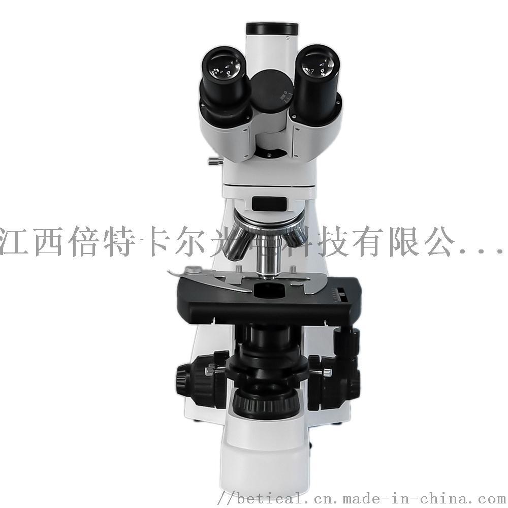 S800T-720HS高校实验室水质检测检验显微镜890769045