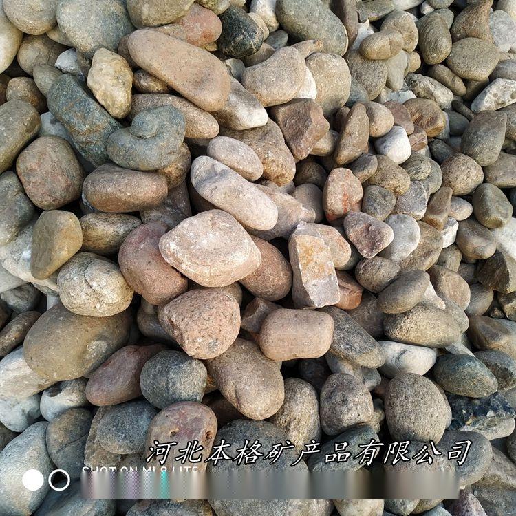 Cache_2992587386464ae2..jpg