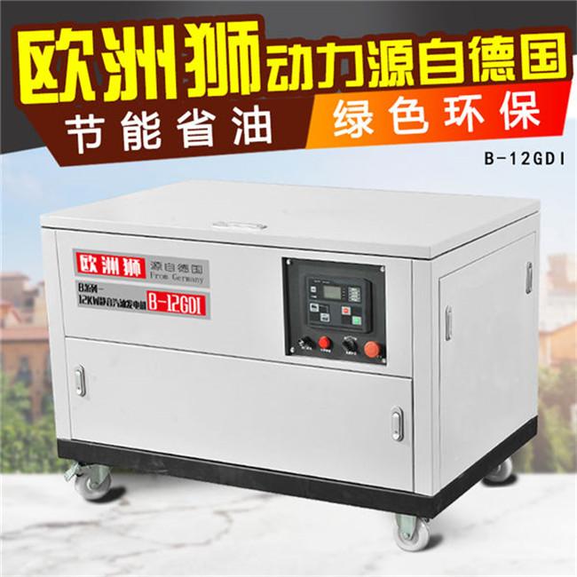 12kw汽油发电机 (8).jpg