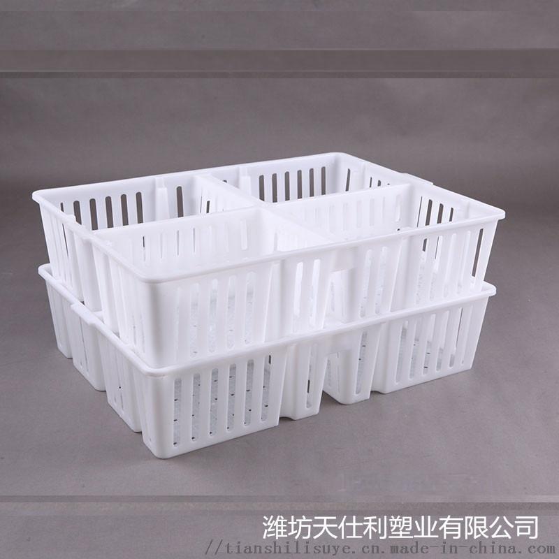 鸡苗运输筐 四格鸡苗运输笼 塑料鸡苗筐133704125