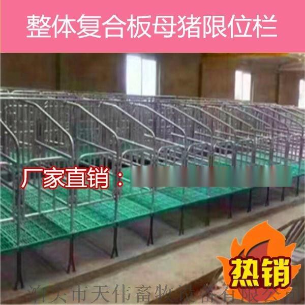 灵宝养殖母猪定位栏 保胎母猪定位栏 镀锌母猪定位栏56998865