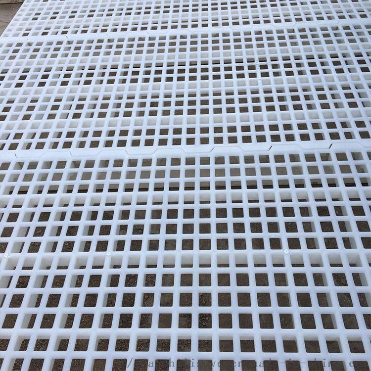厂家大量供应鸭用漏粪版 鸭用塑料漏粪网834629742
