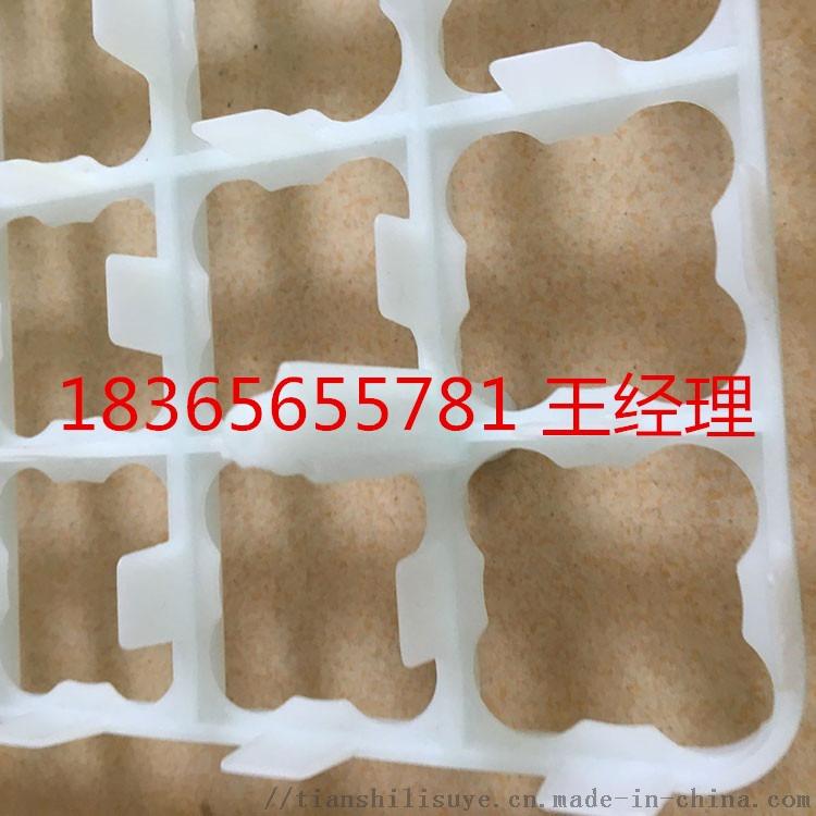 山东塑料鸡蛋托生产厂家 优质塑料鸡蛋托113064322