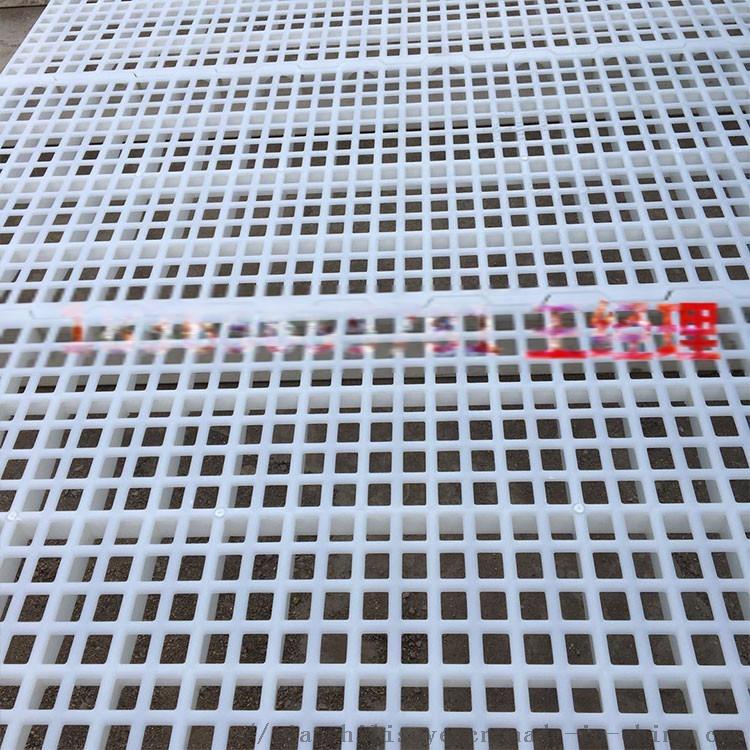 鸡舍漏粪板 塑料漏粪板 养鸡场漏粪板897944105