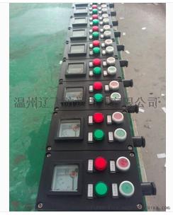 FZC-S-A2B1D2G三防操作柱61383282