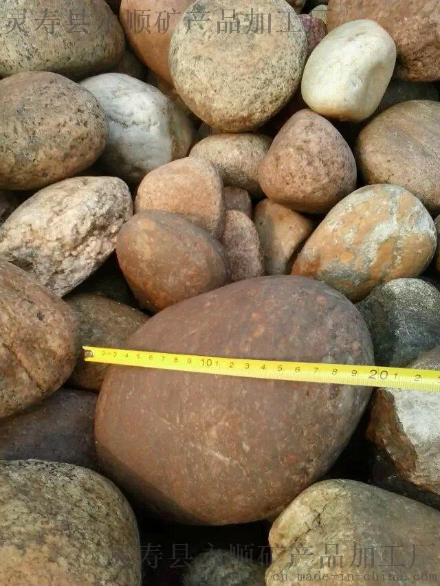 山西太原5-8公分天然鹅卵石厂家 太原鹅卵石批发35445212