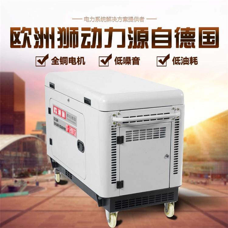 10kw柴油发电机 (2).jpg