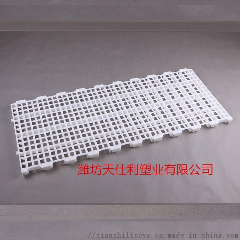 塑料鸡用漏粪板供应 鸡场漏粪板 鸡舍漏粪板厂家836499822