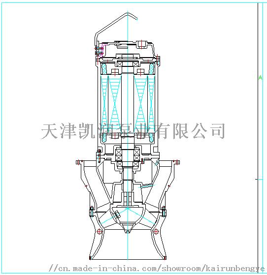 轴流泵结构.png