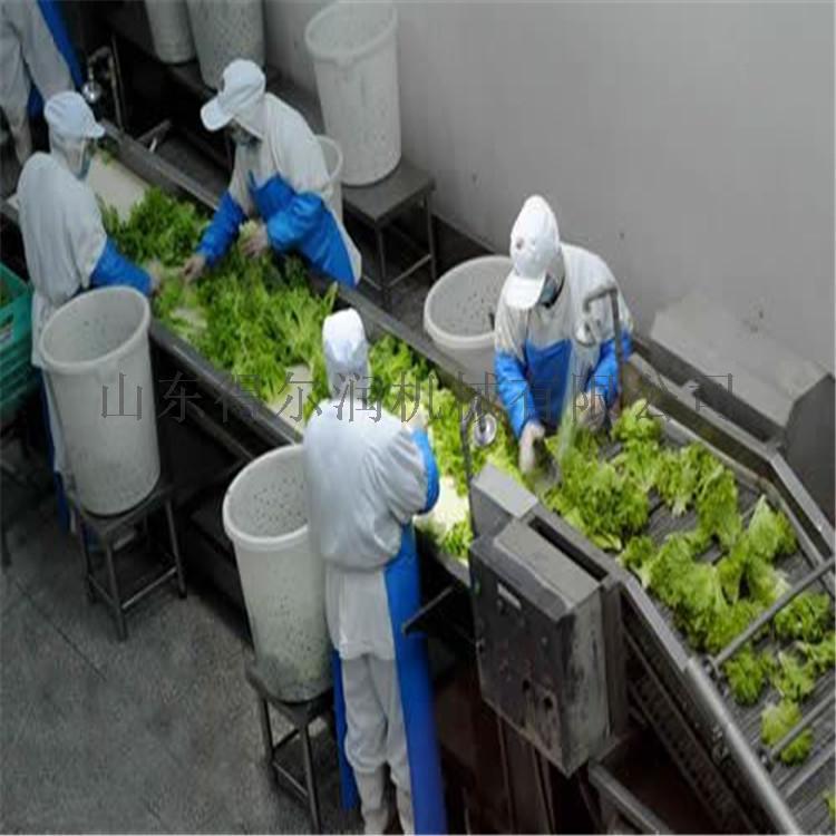 山东 净菜加工生产线 油菜清洗机 连续净菜加工设备767106072