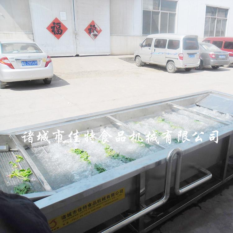 南陽葉類蔬菜清洗機技術說明745910212
