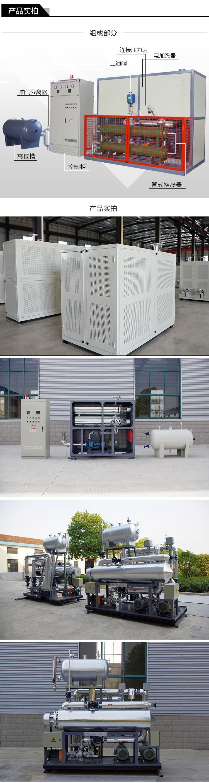 江苏瑞源厂家供应医药行业反应釜加热电加热导热油炉79014195