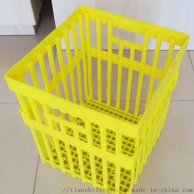 新式塑料种蛋筐 配孵化器用种蛋筐 种蛋运输箱850525662