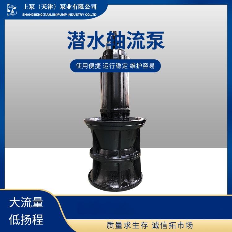 潜水轴流泵-(3).jpg