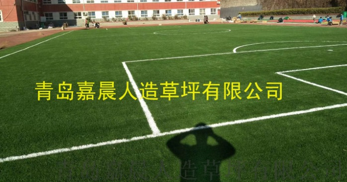 足球场人造草坪人工草皮塑料假草坪820245085