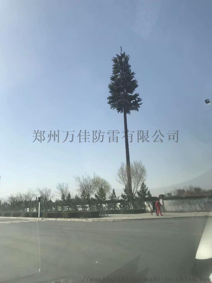 14米單管仿生松樹避雷針塔,景區仿生樹通訊塔基站817477542