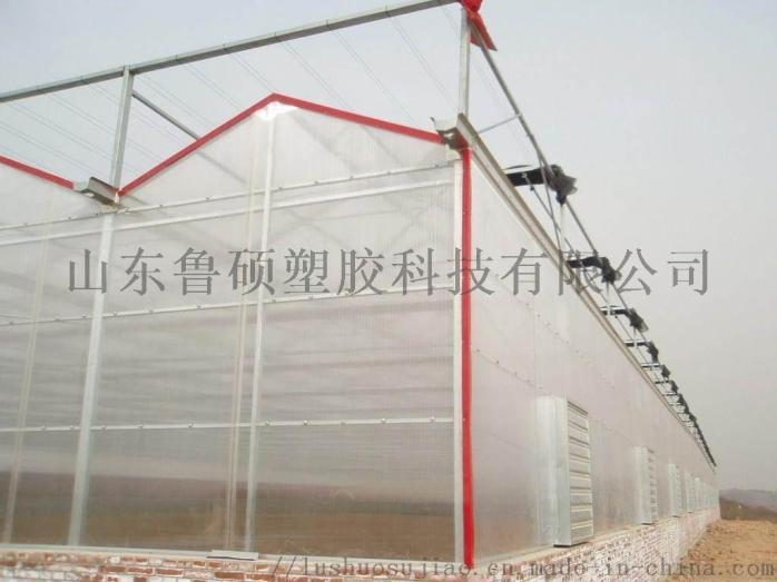 阳光板温室.jpg