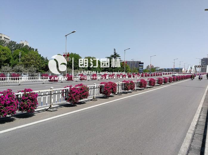 道路護欄綠化種植器 朗汀園林花盆廠家