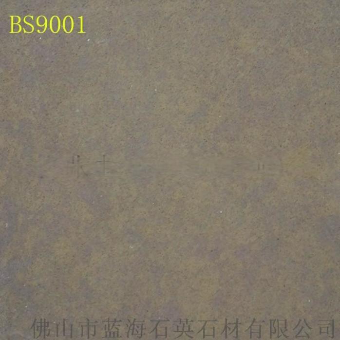 BS9001,.jpg