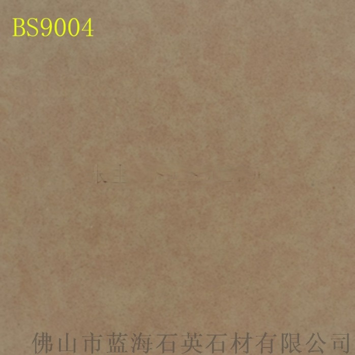 BS9004_副本.png