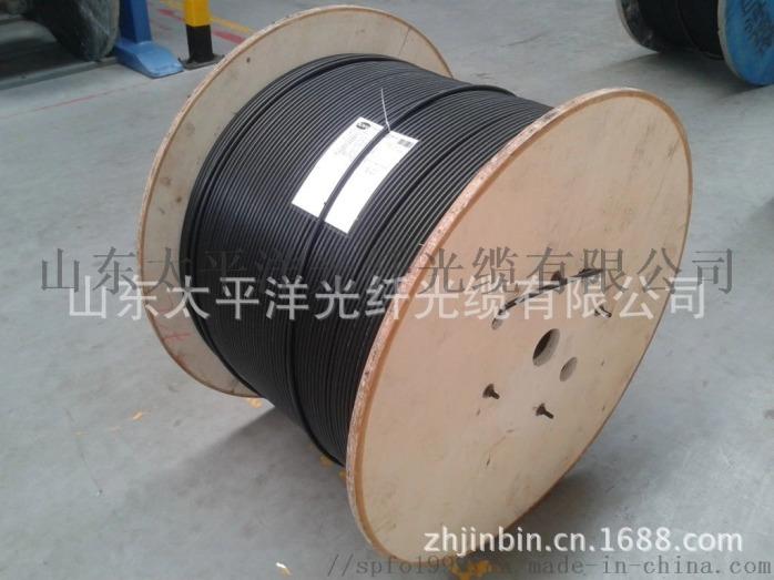 太平洋 GYFTY-6B1 6芯 室外非金屬光纜817071552