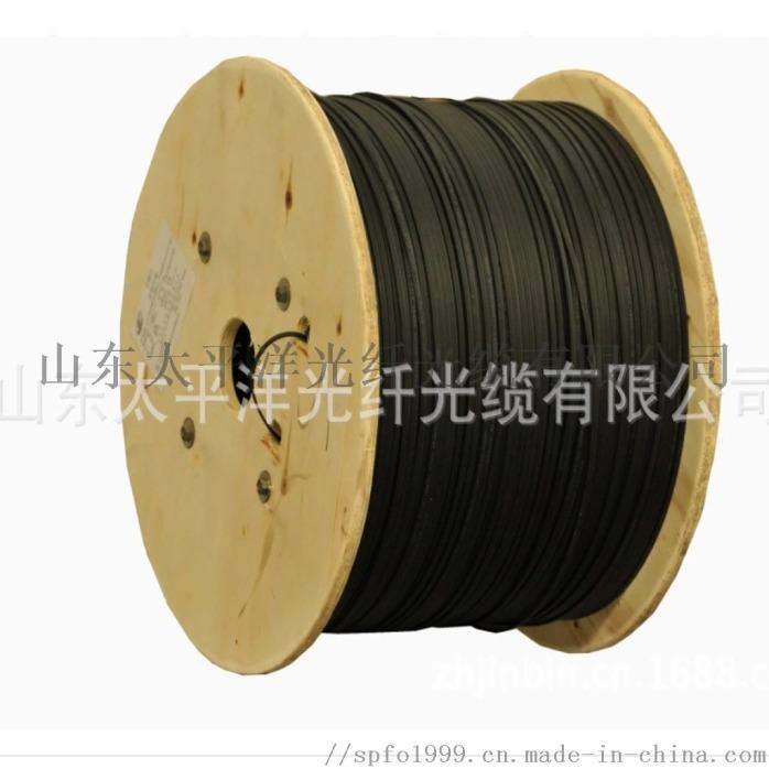 太平洋光纜 GYFTY-4B1 室外非金屬光纜817070692